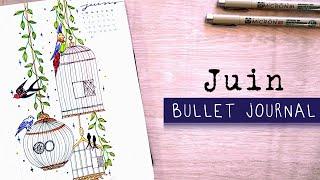 Bullet Journal Juin 2020 | ORG…