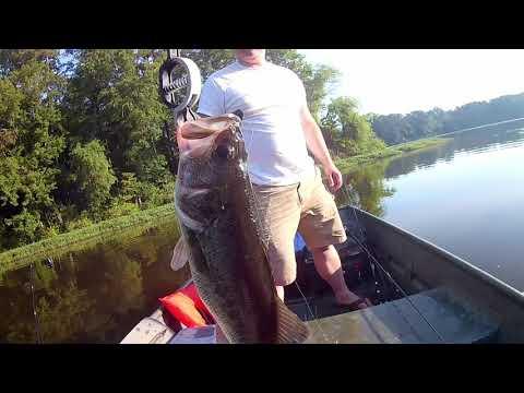 Fishing Lake Benson (Garner NC) Part 1