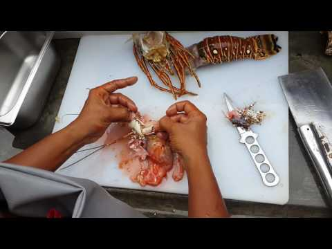 How to clean a spiny lobster