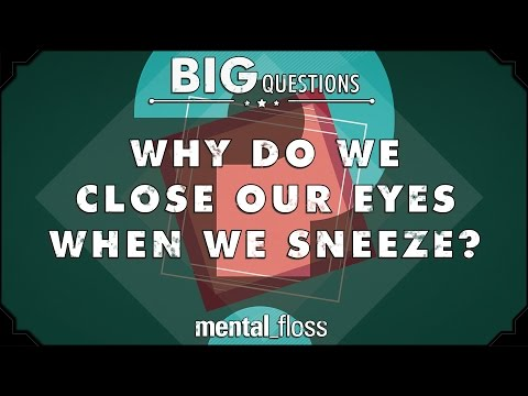 Why do we close our eyes when we sneeze?  - Big Questions - (Ep. 228)