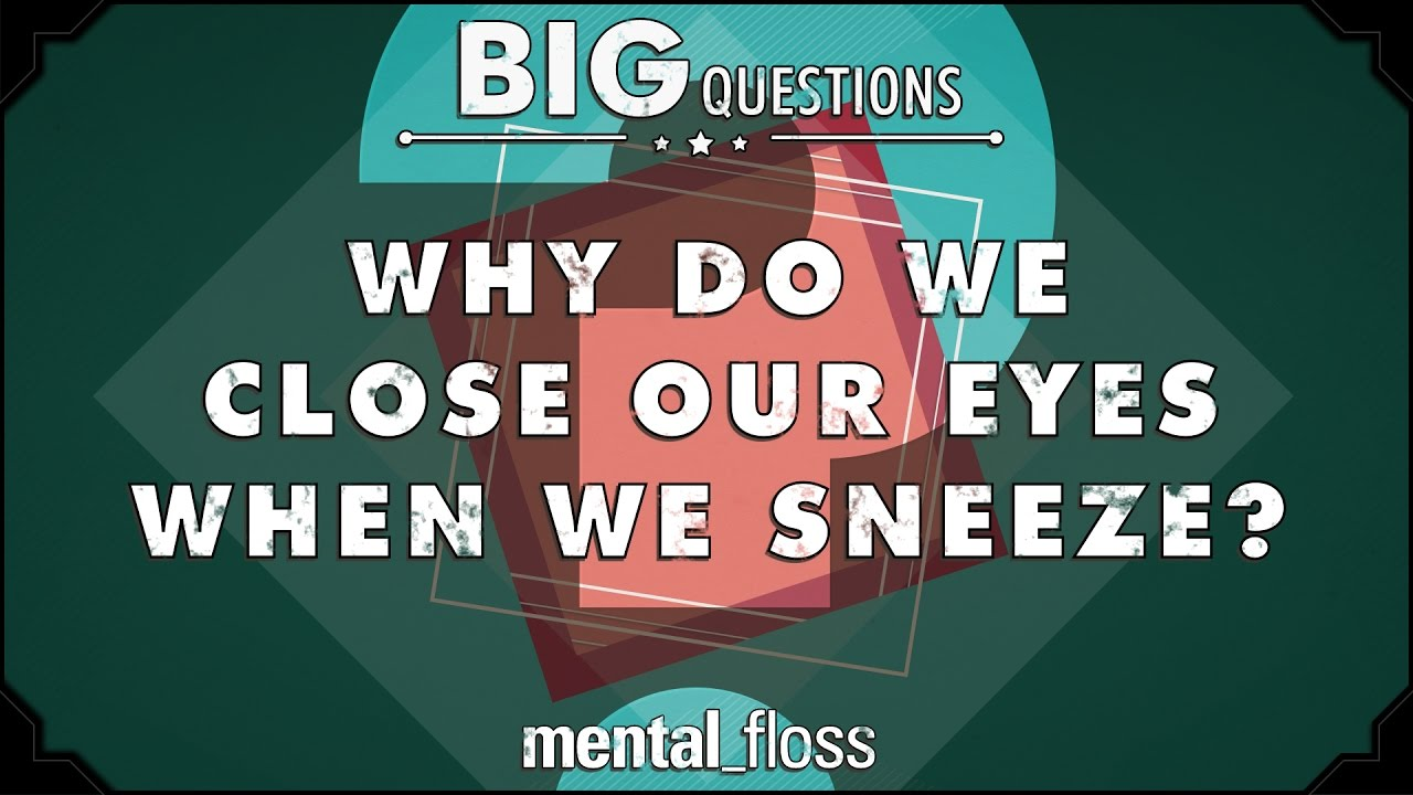 why-do-we-close-our-eyes-when-we-sneeze-big-questions-ep-228