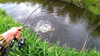Вечер на рыбалке удался две большие щуки на м.Light спиннинг  были пойманы. Лучшая рыбалка !