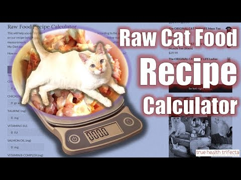 How to make raw cat food recipe homemade cat food for healthy cats how to make raw cat food using the recipe calculator cat lady fitness forumfinder Choice Image