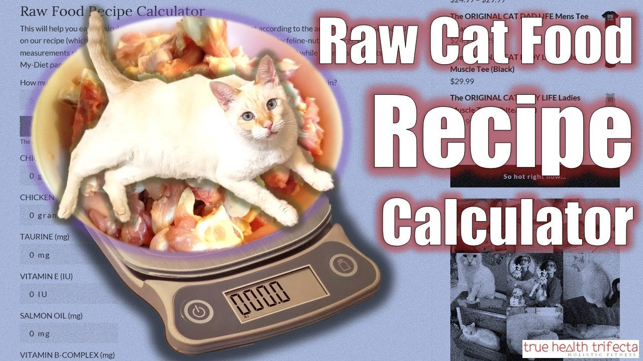 cat raw food diet ratio