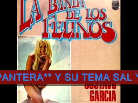 La Banda de Los Felinos Dirge Gustavo Garcia La Banda De Los Felinos