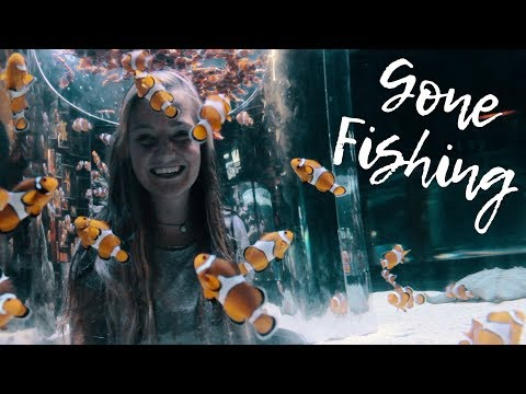 Gone fishing - A Day at the Cape Town Aquarium!