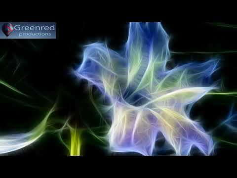 Deep Sleep Music, Binaural Beats Music for Better Sleep Quality, 8 Hour Sleeping Music