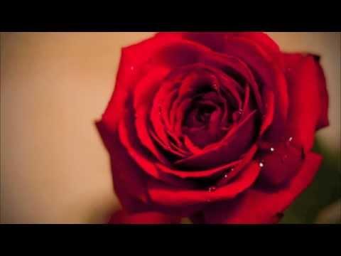 "R&B Love Instrumental Beat - ""24 Days"""