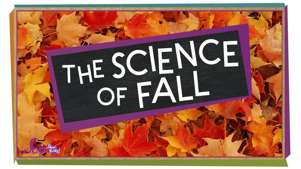 First Day of Fall: The science behind it