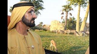 محمد بن راشد يزور سفاري دبي
