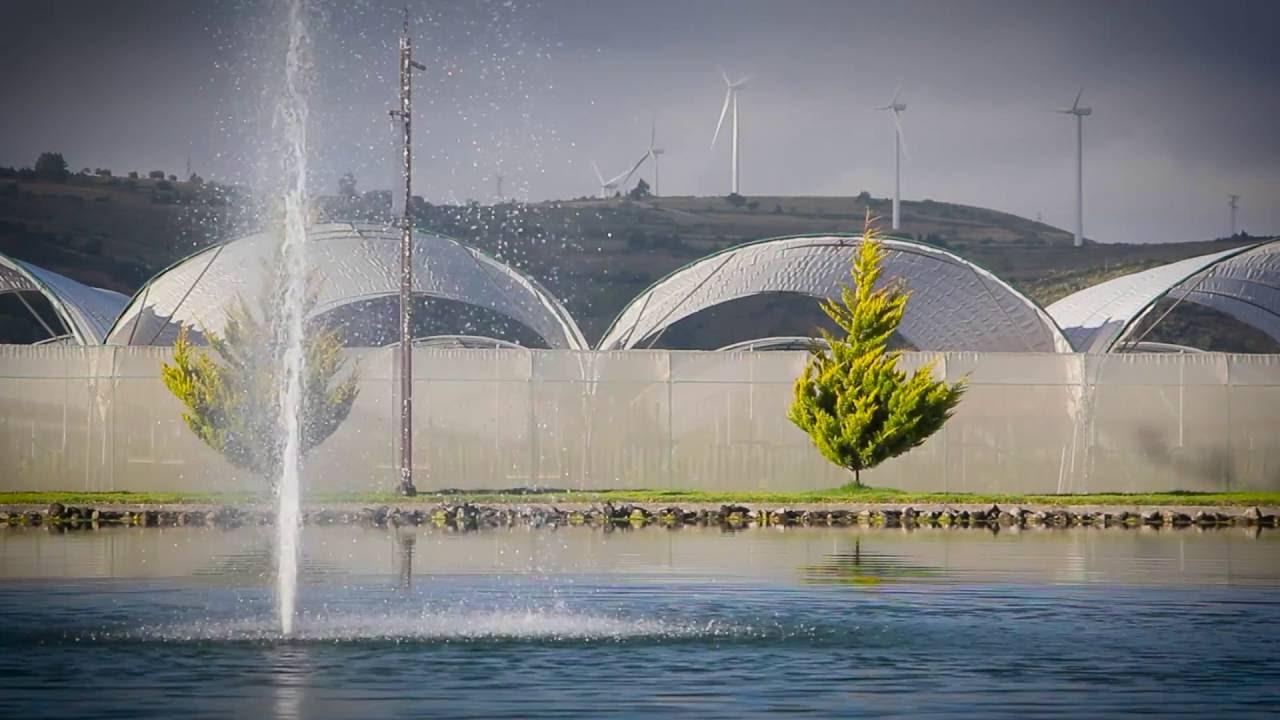 Agroparque Esperanza cuenta con un parque eólico.