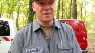 Potsdam nach der Bombenentschärfung - Mike Schwitzke im Interview