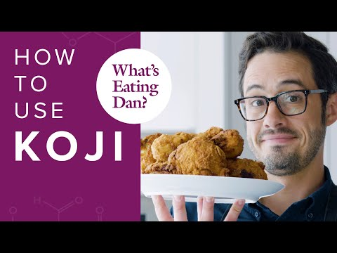 how-to-use-koji-|-what's-eating-dan?