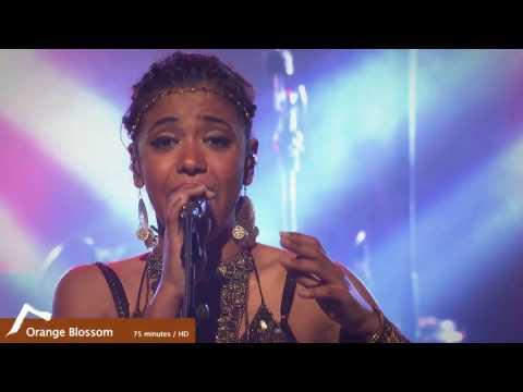 Orange Blossom -  Black box HD Live