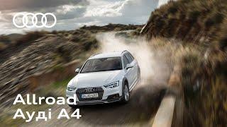 Audi A4 Allroad | Audi Центр Vipos