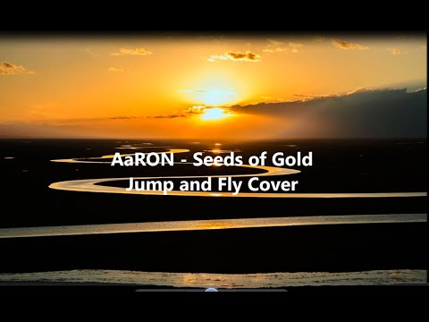 AaRON - Seeds of Gold (Jump And Fly cover and lyrics)
