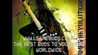 You Make Me Feel Good - Alborosie - 2 Times Revolution - 2011 - Reggae