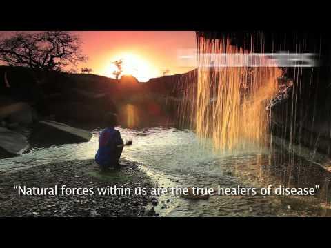 Hippocrates health quote