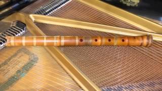 C.Franck: Violin Sonata - Allegretto ben moderato (shakuhachi & piano)