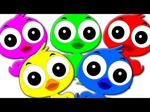 Colorful Ducks Song | Kids Videos Compilation | Kindergarten Nursery Rhymes For Children By Kids Tv