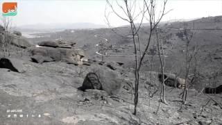 بالفيديو.. حرائق الغابات تجتاح شمال إسبانيا
