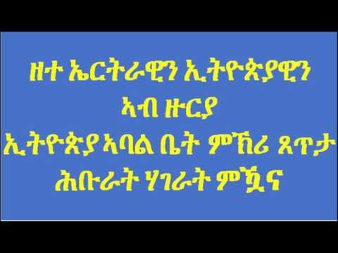 Ethiopian and Eritrean discuss (VOA)