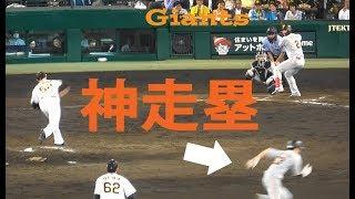 巨人 増田 大輝『 神走塁 』 vs 阪神 2019年7月8日 甲子園球場