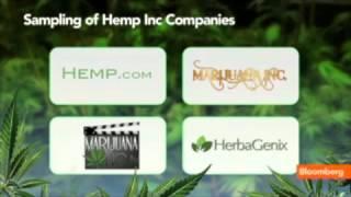Bruce Perlowin Hemp Inc Bloomberg Interview
