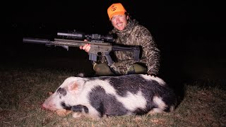 Hunting Calico Hog with Night Vision