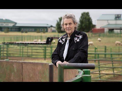Inside Academia: Colorado State University  Animal Welfare: Good For Livestock, Good For Business