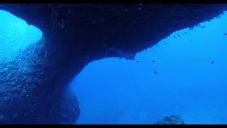宮古島ダイビングショップ山本大司潜水案内のムービーです。 ダイビング...