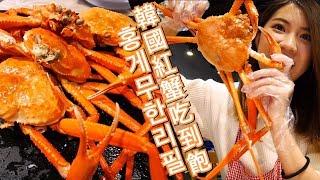 (먹방)홍게무한리필!????️2019年末就是要紅蟹吃到飽哇!crab unlimited in Korea!艾蜜莉關 대게 잘 되는 집 [대만사람 한국생활]