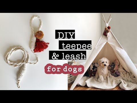 diy-teepee-&-leash-for-dogs-(no-sew)