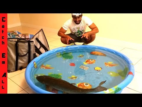 KEEPING MEGA FISH INDOORS with POOL POND! thumbnail