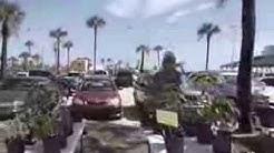 St Augustine Beach Farmers Market July 3, 2013