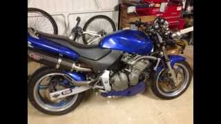Honda hornet cb600f modified
