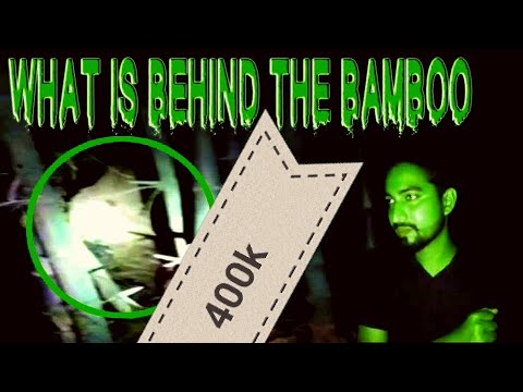 what is behind the bamboo | Facebook Live | ghost hunter investigators