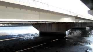 天白大橋 北岸高架下 シーバス 釣りメジャースポット 天白川