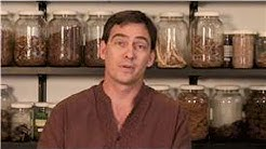 hqdefault - Treat Kidney Failure With Herbs