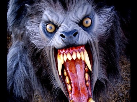 Thumbnail: New Classic Horror Movies Track of the Moon Beast 1976