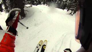 Nice Tree Run at Whistler Thumbnail
