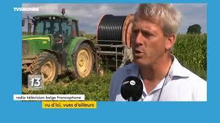 Hêtre suisse, coup de chaud en Belgique, .. votre Zapping francophone du lundi 6 août 2018