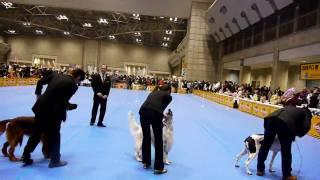 2009FCI東京インター グループ戦①.