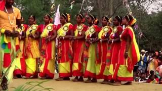 indian tribal santali folk dancesantali new traditaional dance 2017