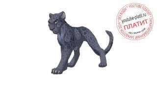 Как нарисовать обиженного кота карандашом поэтапно за 29 секунд