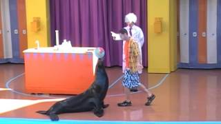 Clyde and Seamore: Sea Lion High
