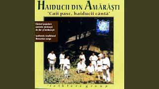 Caii Pasc, Haiducii Canta (The Horses Graze, The Outlaws Sing)