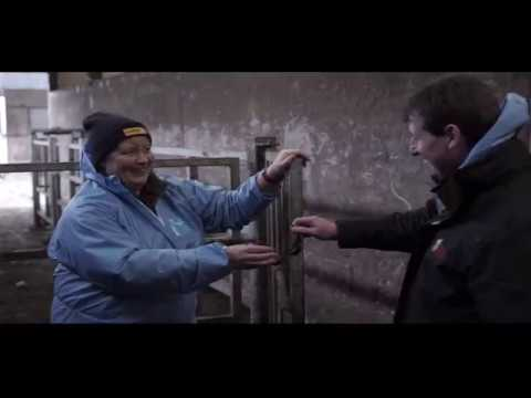 Handle Cattle Safely - Practical based seminar