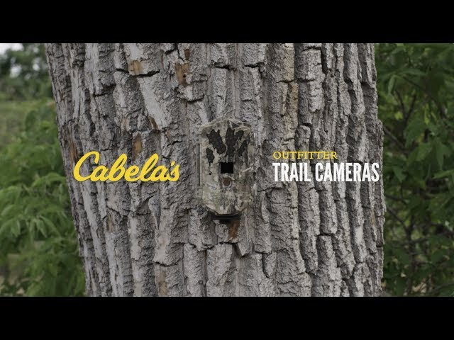 Cabela's Outfitter Trail Cameras   The Solution