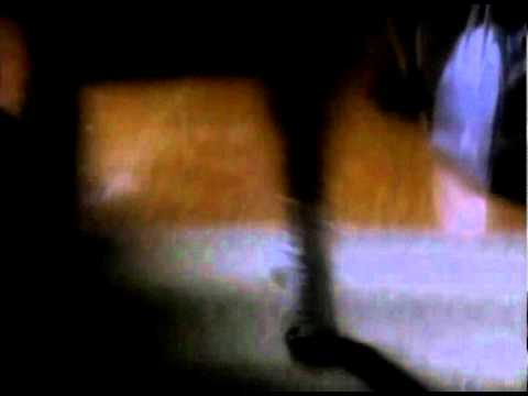 Twin Peaks Hook Rug Dance